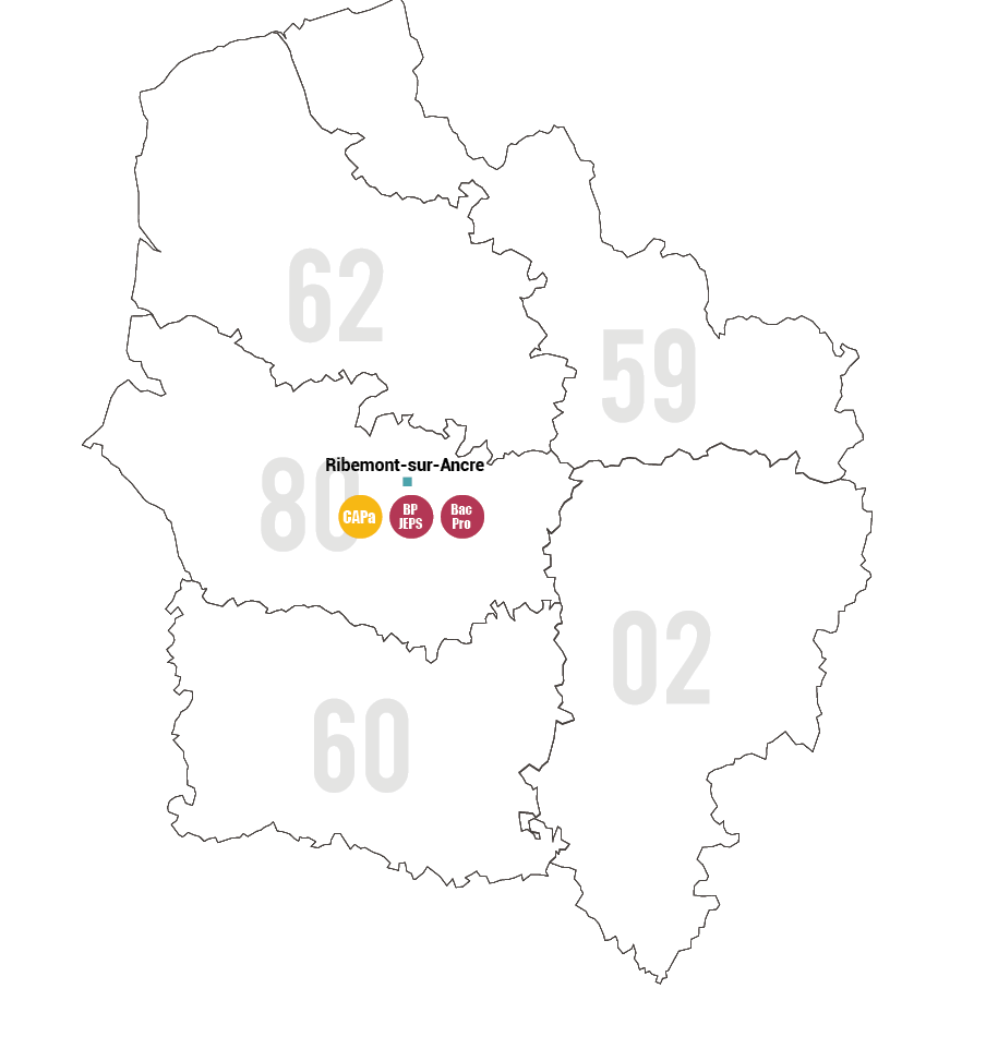 Carte Filière Cheval