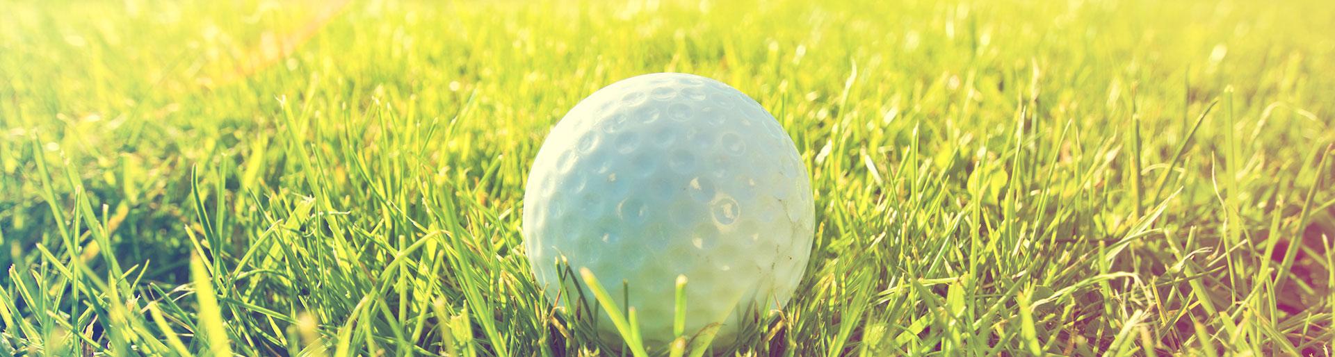 Titre Pro ITG - Balle de golf dans le gazon