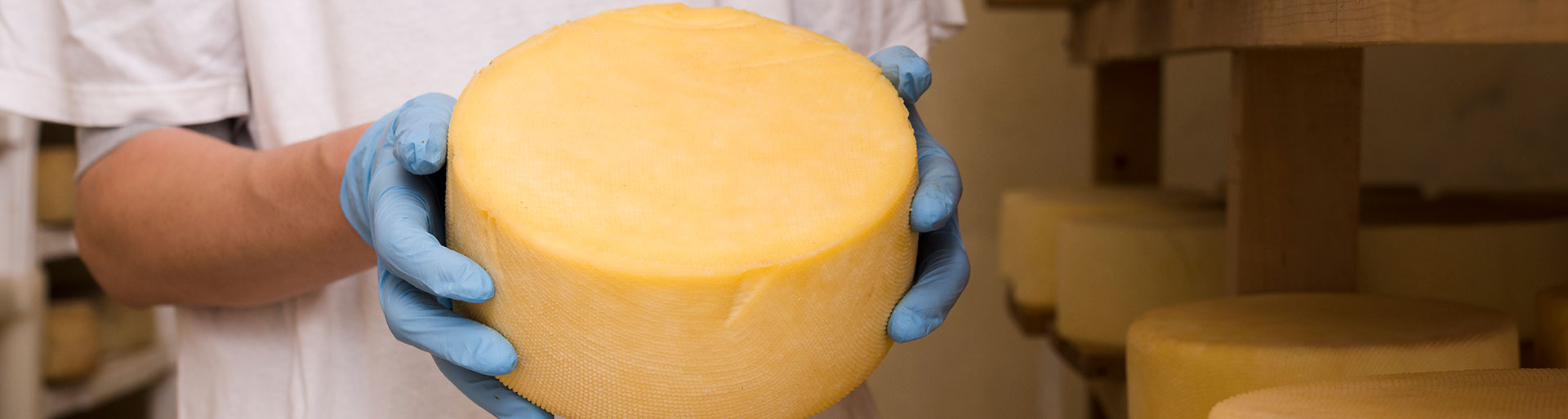 CS PTCPF - Fromage en production