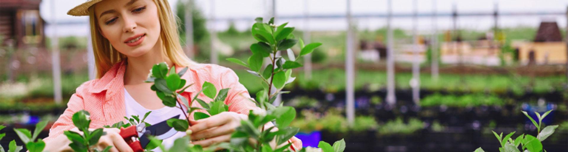 BPA TPH - Femme taillant des plantes