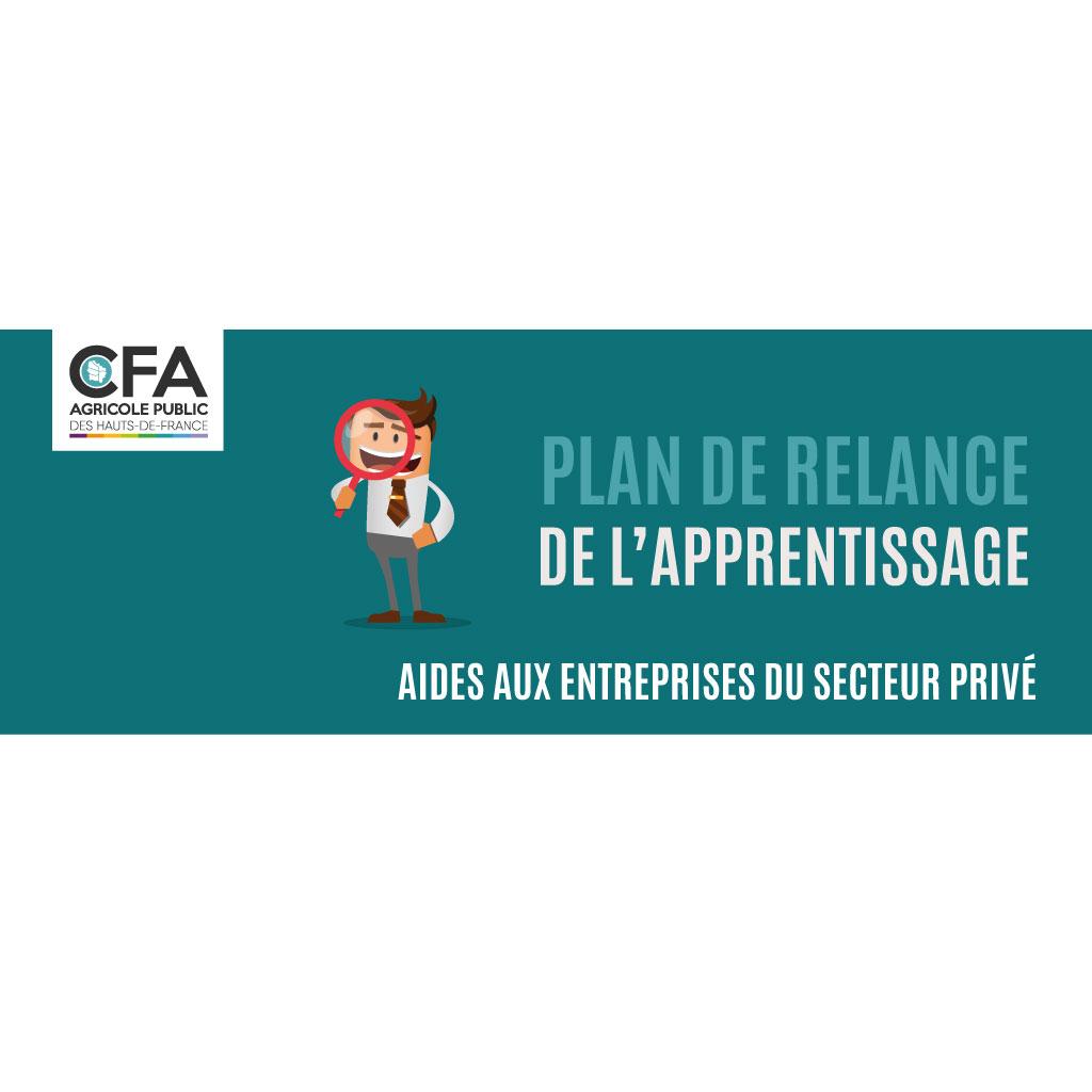Plan de Relance de l'Apprentissage - Aides aux Entreprises du Secteur Privé